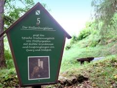 Der Hallenburgfelsen Schild